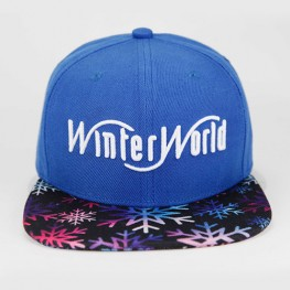 WinterWorld | Snapback Cap