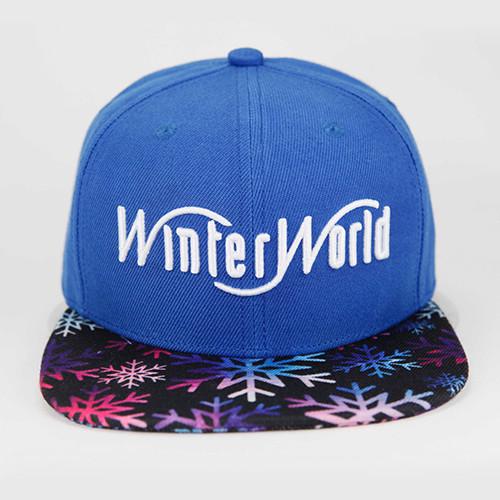 WinterWorld   Snapback Cap